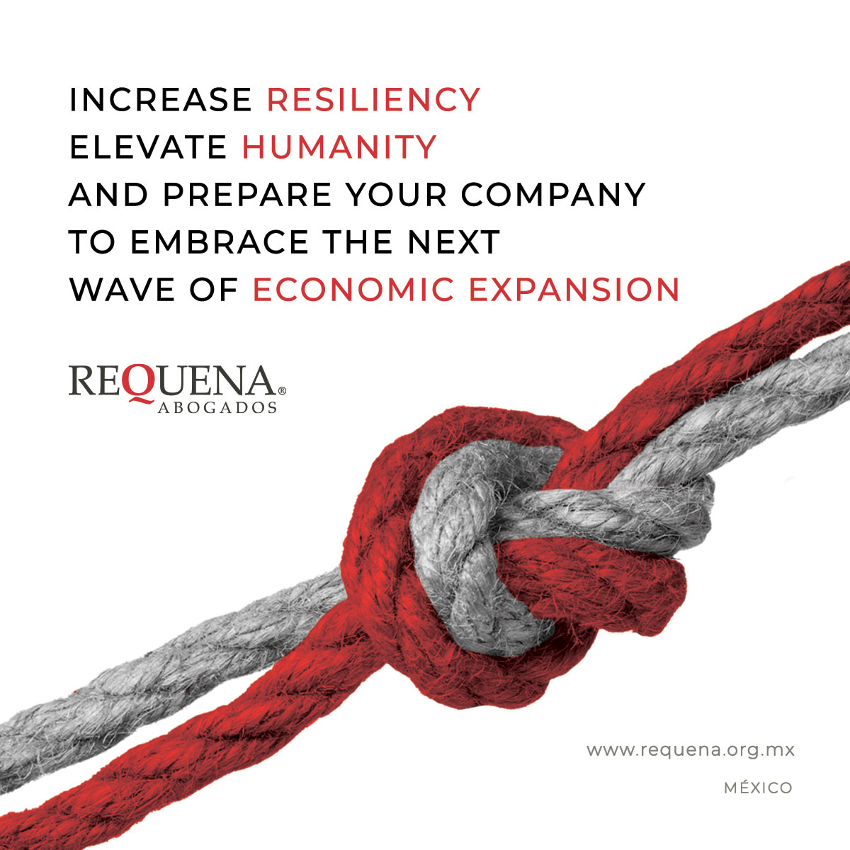 Increase resiliency elevate humanity and prepare your company to embrace the next wave of economic expansion | Covid-19 | Requena Abogados